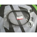 Alternator Belt Genuine MGRover New