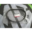 MGZR MG ZR Alternator Belt Genuine MGRover New